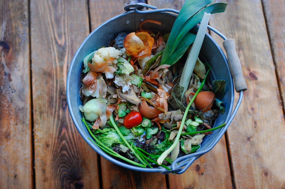 composting pile in a bucket