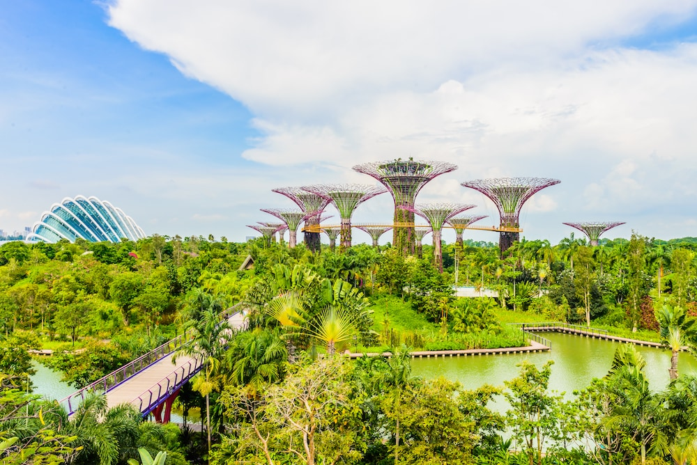 This is photo of Supertree Grove at Gardens by the Bay in Singapore