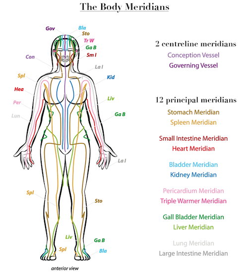 This is an image of the body's meridians