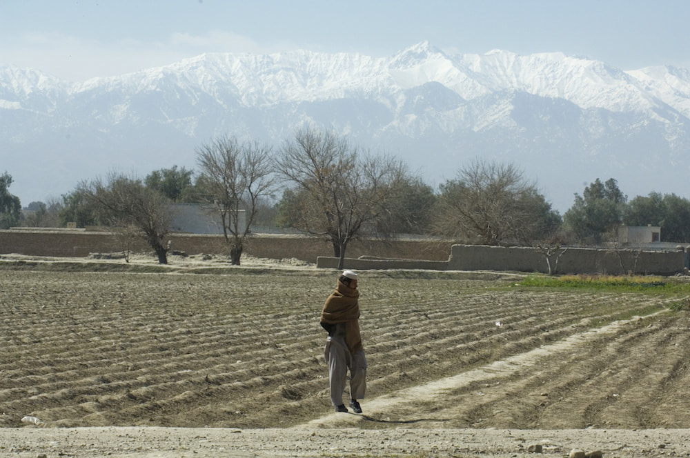 Plant for Peace farmer in Afghanistan