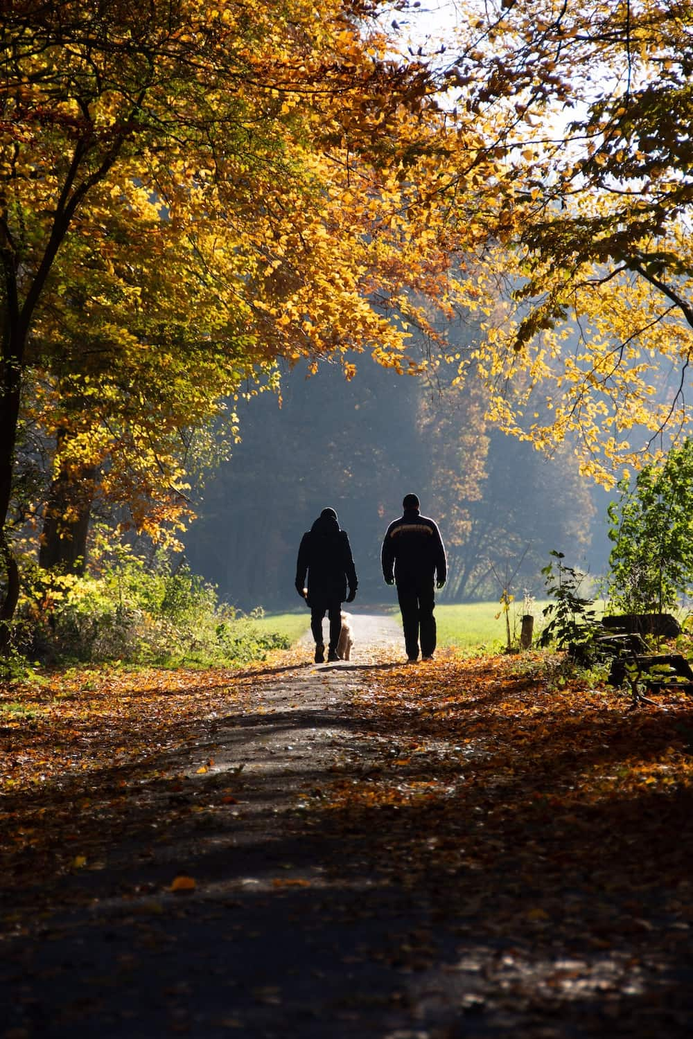 Two people walking dog along path