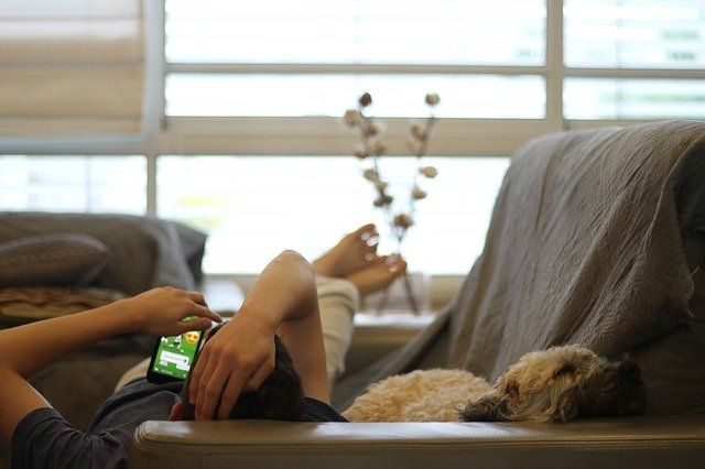 A man scrolls on instagram, laying on the sofa with his dog