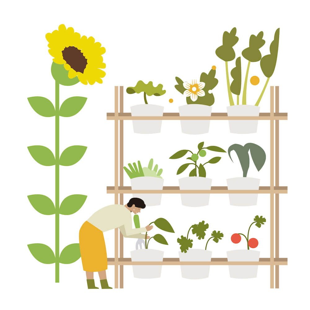 Illustration of a person gardening
