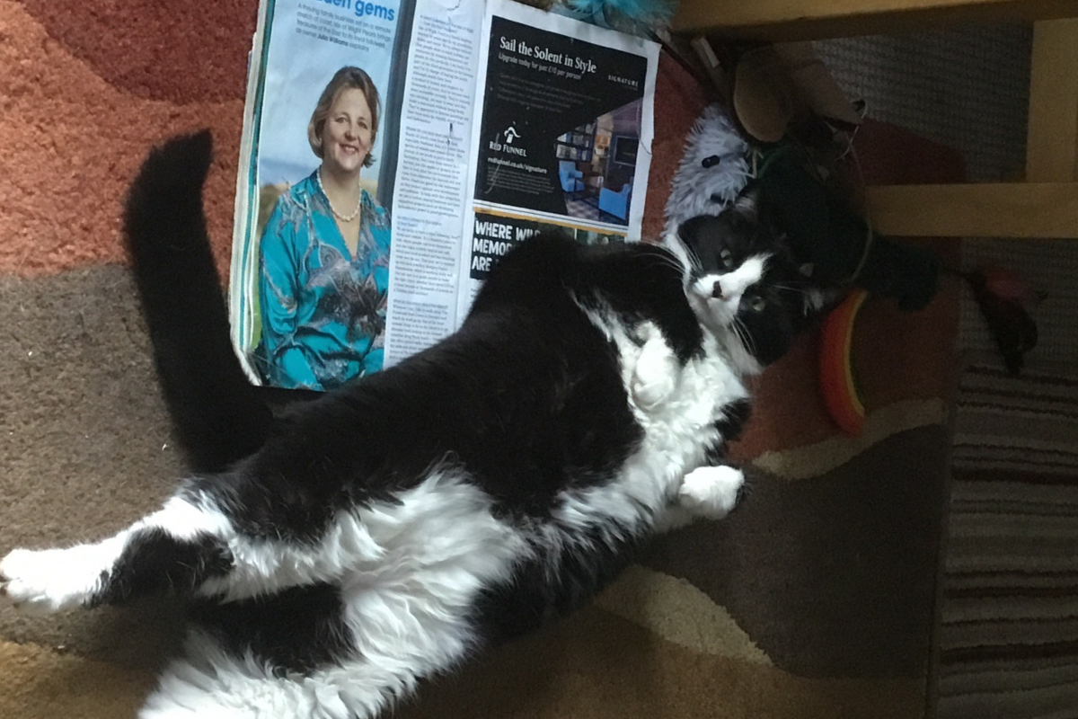 A black and white cat lying on an issue of Happiful magazine